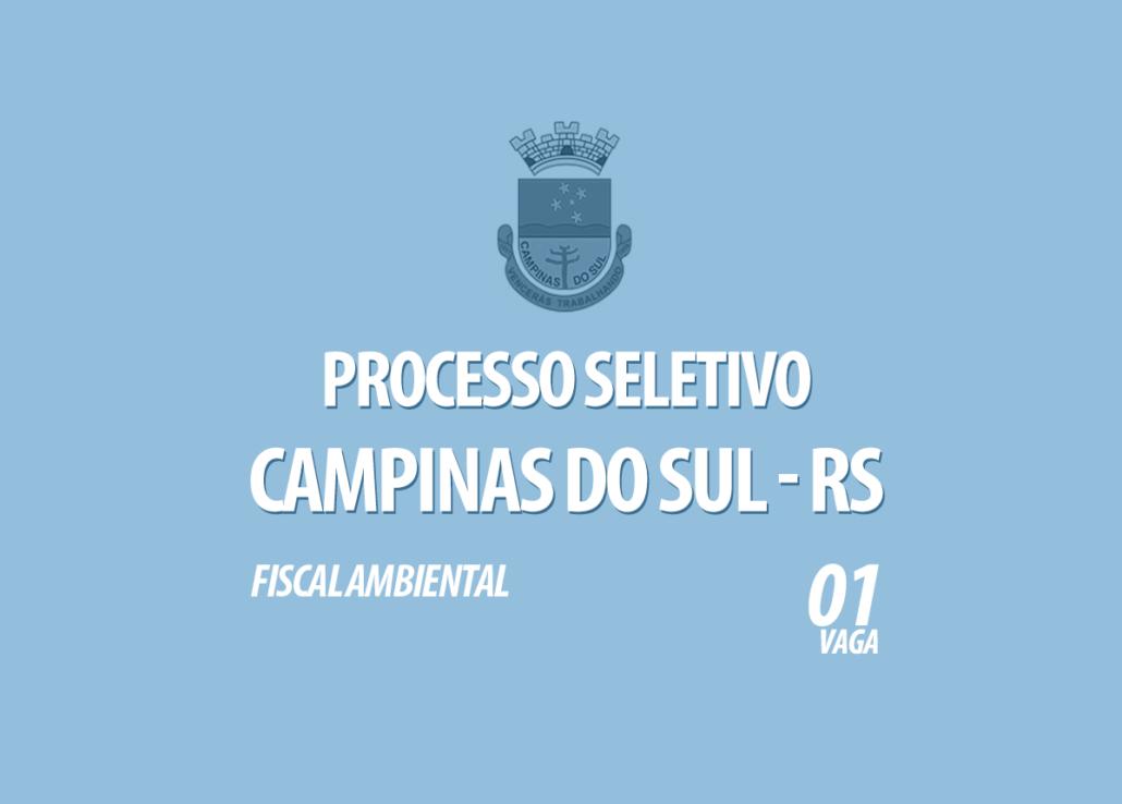 Processo Seletivo Campinas do Sul - RS Edital 002/2020